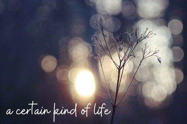 Sermon Title: a certain kind of life