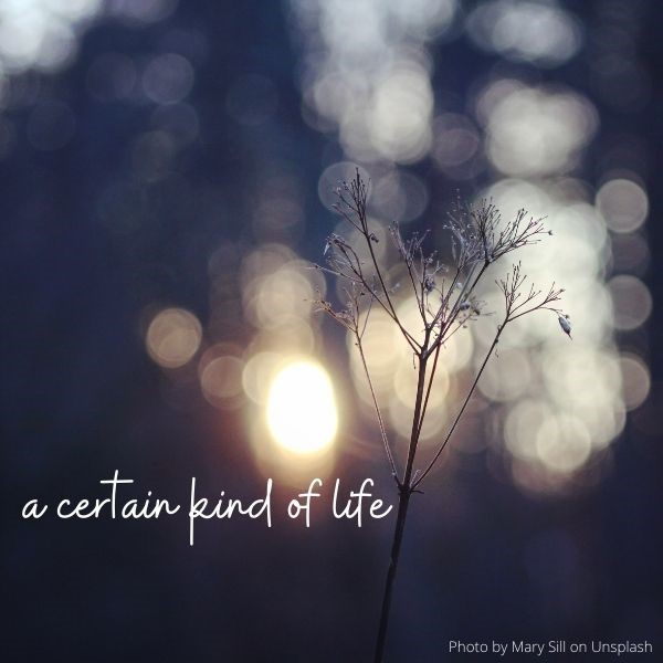 Sermon Title: a certain kind of life