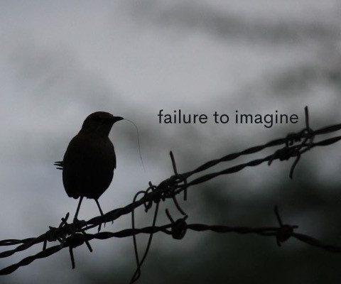 failure to imagine