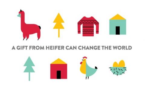 Heifer Gift Image