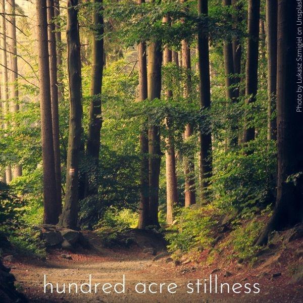 Sermon: Hundred Acre Stillness